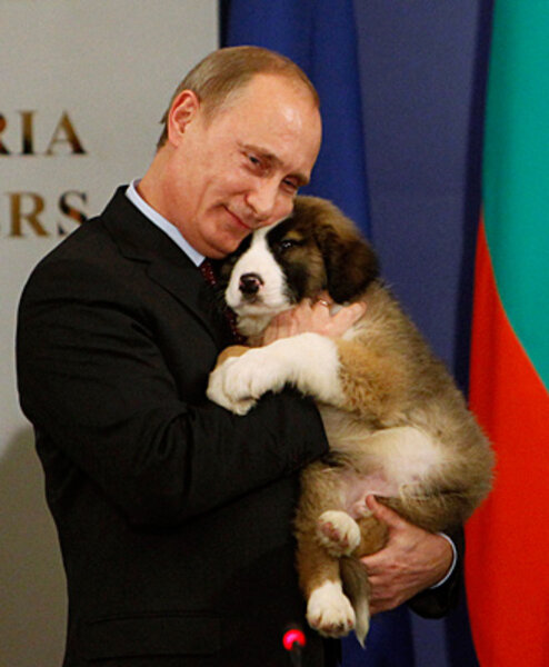 Image result for putin and puppy