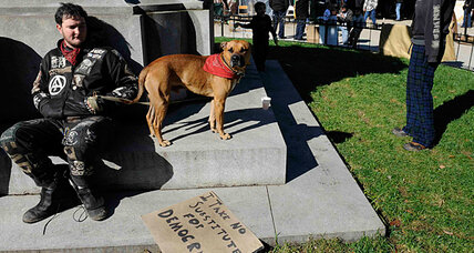 Occupy Dog Street: pets in protest