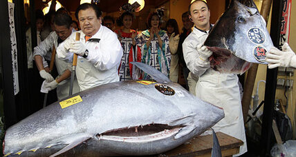 Bluefin tuna auctioned in Tokyo for record $736,000