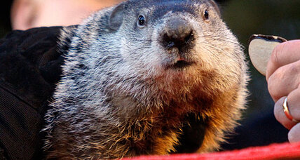 The science behind Groundhog Day (Hint: There isn't any.)
