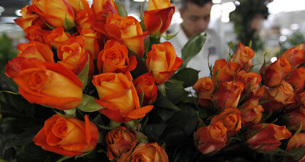 Valentine's Day gifts: How to save money on roses