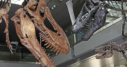 T. rex bite much worse than previously thought