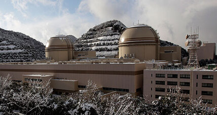 Will Japan hold a referendum to scrap nuclear power?