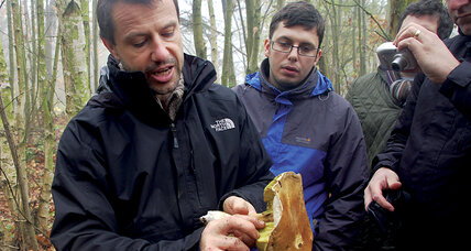 Balmy English winter a boon to forest foragers