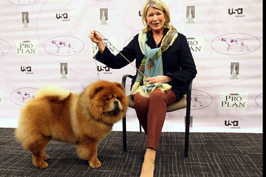 Martha Stewart's Chow Chow wins at Westminster dog show