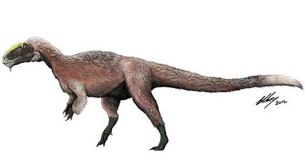 Was Tyrannosaurus rex actually fuzzy? (+video)