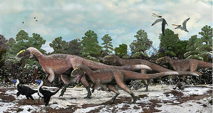 Humongous fuzzy dinosaur unearthed in China (+video)