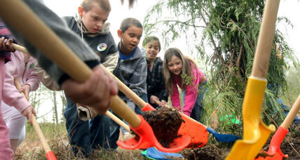 Arbor Day: 5 reasons to plant the family tree