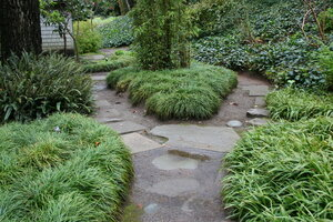 The Use Of Varied Ground Cover Plants Is A Traditional Element In Japanese  Garden Design.
