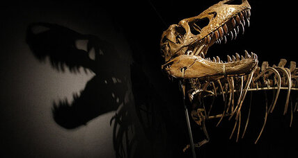Were dinosaurs in decline before the asteroid?