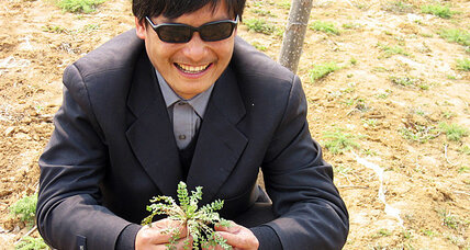 Chinese dissident Chen Guangcheng's next step: Study at a US university?
