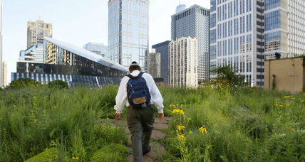 Academic elites migrate to 'green cities' in increasing numbers