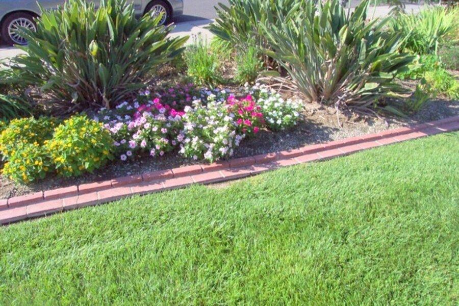 Southern California Gardening In May Csmonitor Com