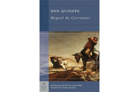 the many perspective views of the novel don quixote In many ways, don quixote is a novel about how don quixote perceives the world and about how other characters perceive don quixote his tendency to transform everyday people and objects into more dramatic, epic, and fantastic versions of themselves forces those around him to choose between adapting to his imaginary world or opposing it.