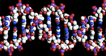 Scientists create artificial DNA molecule