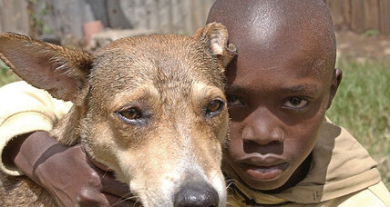 Dog hero in Ghana rescues newborn baby