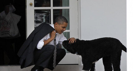How much do you know about presidential pets? Take our quiz.