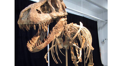 Tyrannosaur allegedly smuggled to US to be returned to Mongolia
