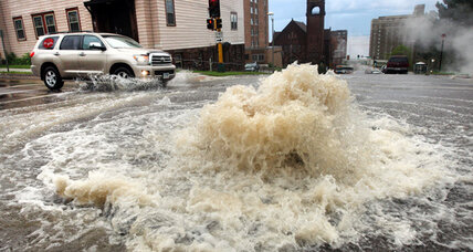 Zoo animals among those escaping Duluth flooding (+video)