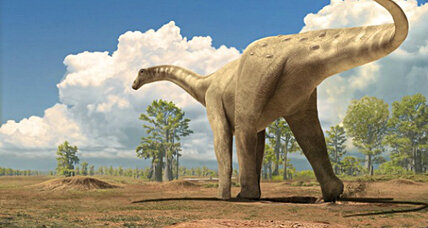 Were dinosaurs warm blooded? The bones point to yes.
