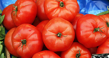A tomato by any other gene: Just as sweet?