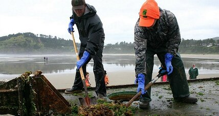 Invasive species ride tsunami debris to US shore