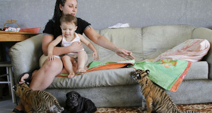 Dogs, cats make for healthy babies, says study. Bring on the fur.