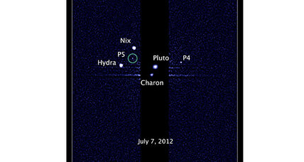 Hubble spots fifth moon orbiting ex-planet Pluto