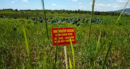 US Agent Orange cleanup in Vietnam indicative of stronger ties