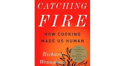 Reader recommendation: Catching Fire