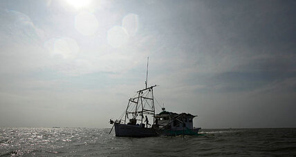 Bottom trawling wrecking ocean floor, study finds