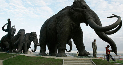 Pleistocene Park? Scientists edge closer to cloning woolly mammoth.