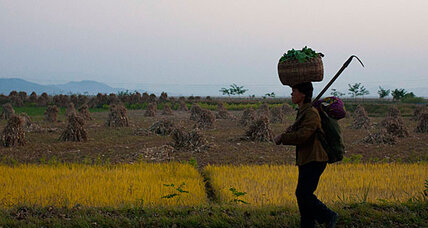 North Korea farm reforms: First step to a market economy?