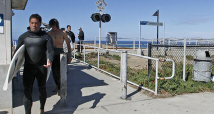 What kind of shark attacked on California coast? (+video)