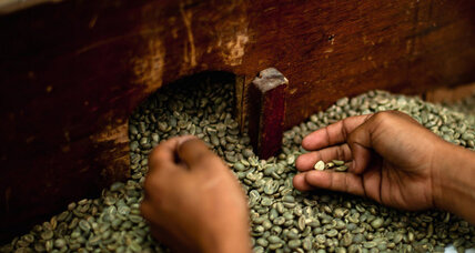 Entrepreneur tries to get Yemenis buzzing about coffee, not qat