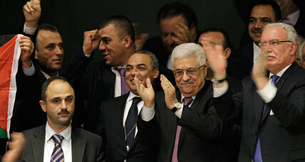 Palestinians win upgrade to 'state ' at UN. What does that change? (+video)