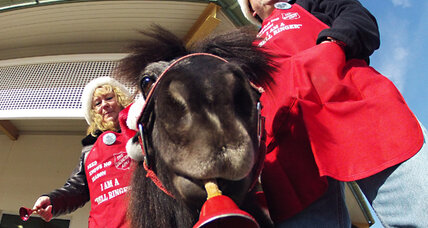 Horse as bell ringer? It works for the Salvation Army.