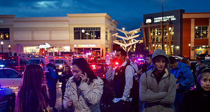 Oregon mall shooting: Another case of a gunman firing at random (+video)