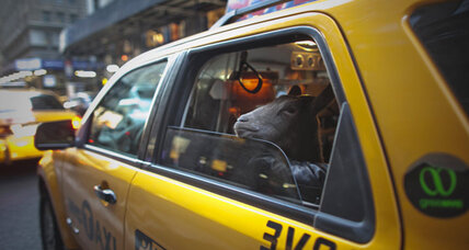 New Yorkers will soon be able to e-hail taxis with smartphones