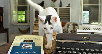 How Ernest Hemingway's cats became a federal case (+video)