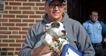 Randy Grim and Stray Rescue reshape a city's approach to animal control