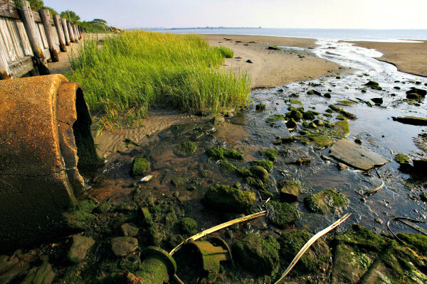 To tackle polluted runoff, cities turn to 'green ...