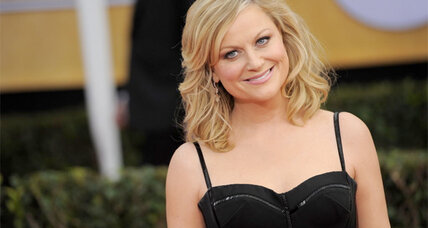 Amy Poehler will release an 'nonlinear diary,' her first book, in 2014