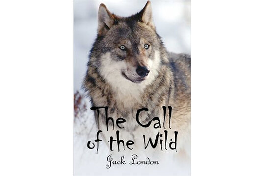 book opinions relating to name for the actual wild