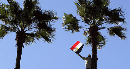 Is the Muslim Brotherhood seeking to kill Egypt's NGOs?