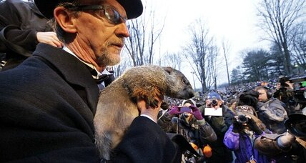 Had your winter Phil? Check Groundhog Day forecast