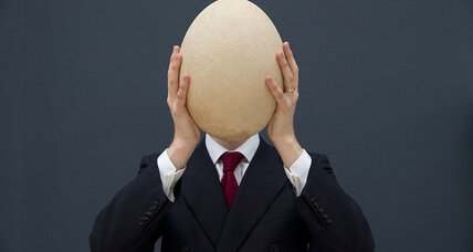 Humongous extinct bird egg up for auction. Where did it come from?