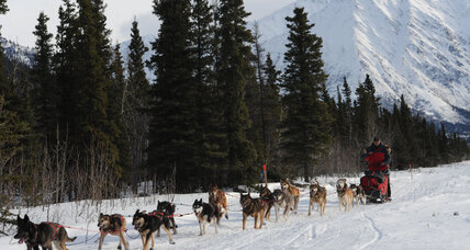 3 killed in small plane crash near Iditarod route