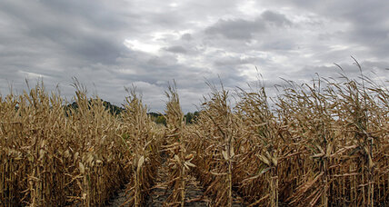 Ethanol mandate: Did the EPA jump the gun?