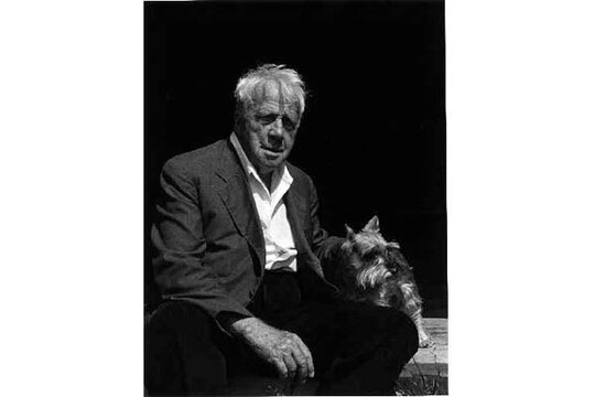 critical response robert frost the Modern american poetry (univ of illinois)  robert frost excerpts of influential  critical commentaries for the following poems: mending wall.